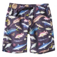 Kavu Big Eddy Shorts - Men's