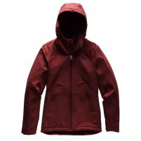The North Face Shelbe Raschel Hoodie (Past Season) - Women's